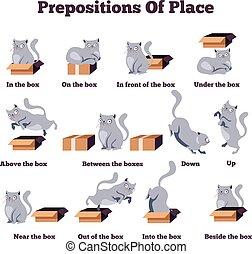 estudiar, concept., english., vector, box., idioma, aislado, lugar, gato, prepositions, caricatura, lindo, posturas, plano, diferente, extranjero, ilustración, carácter