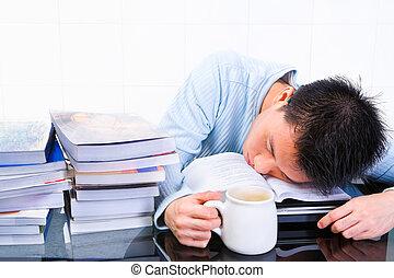 estudo sono, quando