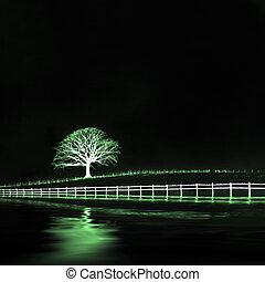 etéreo, roble, paisaje, árbol