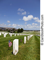etats, national, uni, cimetière, pierres tombales