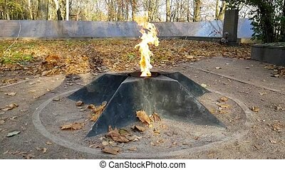 Eternal flame in Krasnoye Selo, Saint Petersburg, Russia....