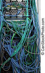 ethernet, cables, en, muchos, colores
