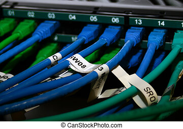 ethernet, interruptor, conectado, cables