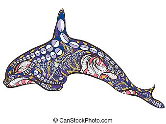 ethnic killer whale isolated on a white background