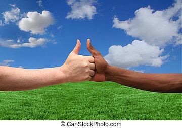 ethnicities, concordar, idéia, dois, um