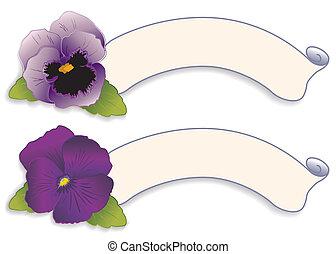 etikette, tags, purpur, stedmoderblomst, blomster