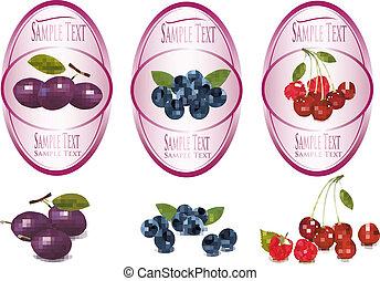 etiketten, set, vruchten