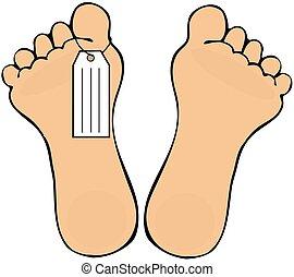 etiqueta, dedo del pie