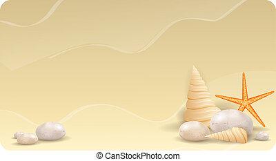 etoile mer, sable, seashells, pierres, caillou, bannière
