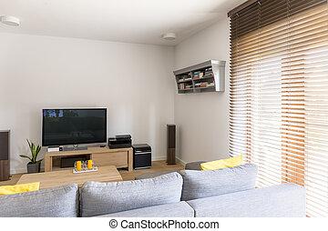 ett slags tvåsittssoffa, rum, med, plasma television
