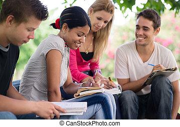 etudiants collège, faire, homeworks, dans parc