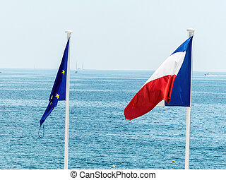 French flag made of flowers. The french national flag made ...