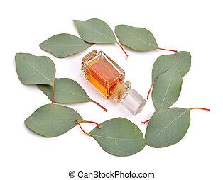 eucalipto, óleo essencial, com, folhas