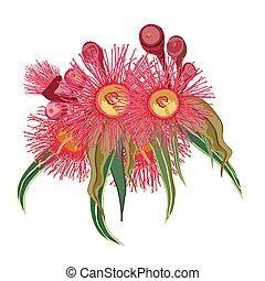 eucalipto, grupo, flores côr-de-rosa
