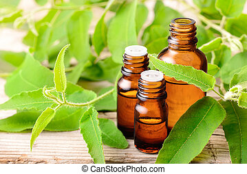 Eucalyptus essential oil and fresh eucalyptus leaves on the wooden table