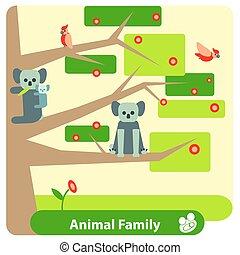 eucalyptus, famille, koala, arbre, flowers., fleurir, oiseaux