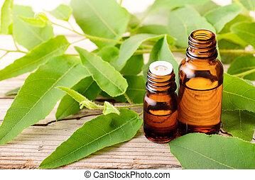 eucalyptus, huile, feuilles, frais, bouteille, eucalytus, essentiel