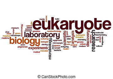 Eukaryote word cloud concept