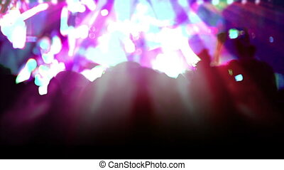 Euphoria Music and Light - People in the crowd raised their...
