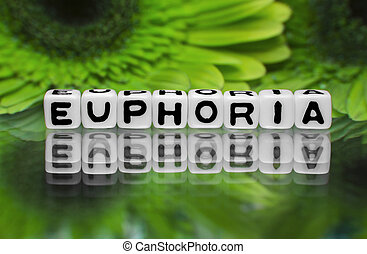 Euphoria text message with green flowers in the background.