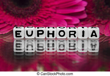 Euphoria text with flowers in  the background.