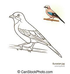 Eurasian jay bird coloring book vector - Eurasian jay bird...