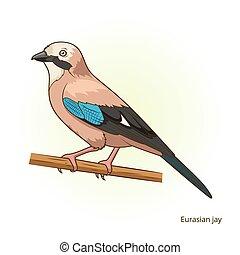 Eurasian jay bird educational game vector - Eurasian jay...