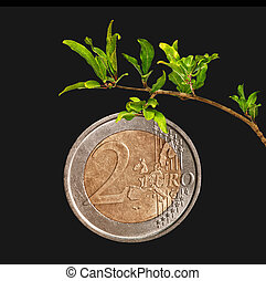 Euro as a fruit on branch
