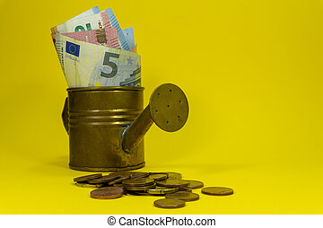 Euro banknotes in a copper watering can