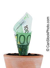 euro-bill, blomst, growth., pot., interesse kurs