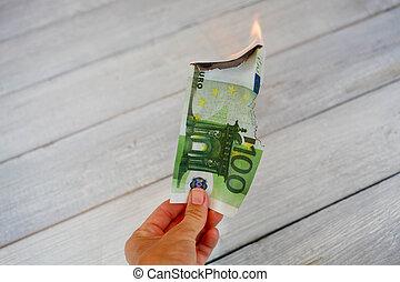 euro billets banque, brûlé, (bankruptcy, financier, crisis).