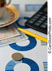 Euro coin placed on paper sheet with blue pie chart
