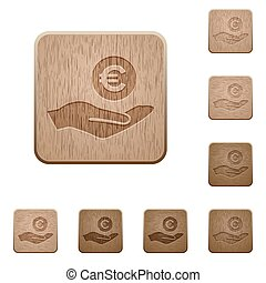 Euro earnings wooden buttons
