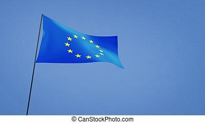 euro flag wide