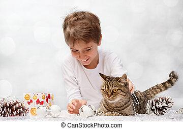 européen, décorations noël, chat
