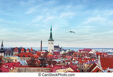 europa, antigas, estónia, town., tallinn, vista