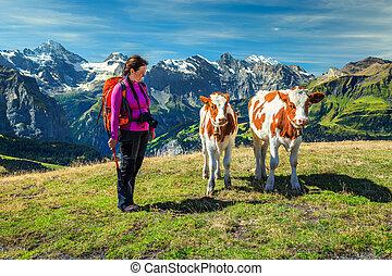 europa, donna, giovane, escursionista, calfs, svizzera, grindelwald, montagne