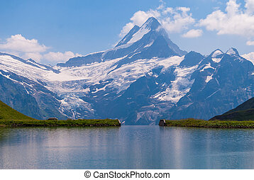 europe, grand, rocheux, montagnes., oberland, grindelwald, bachalpsee, alpes, populaire, bernese, attraction., emplacement, suisse, endroit, vue, vallée, touriste