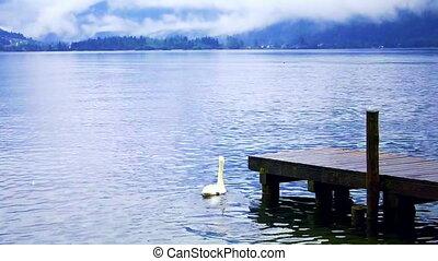 Europe lake, swan and mountian