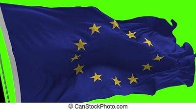Europe Union Flag on Green - Close up Europe Union flag...