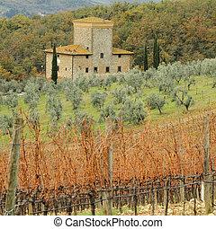 europe, vivant, toscane, italie