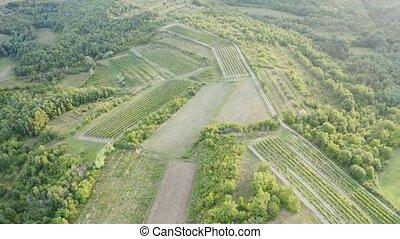 European aerial landscape - European summer landscape, with ...