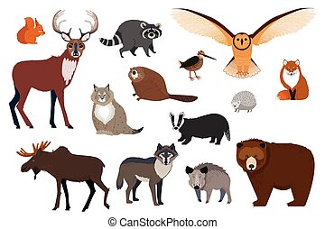 European and Canadian wild forest animals, set of isolated cartoon characters, vector illustration