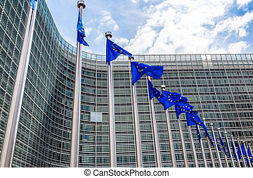 European flags in Brussels - European flags in front of...