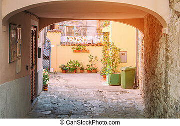 European gateways with cozy landscaping plants in pots on a Sunny day