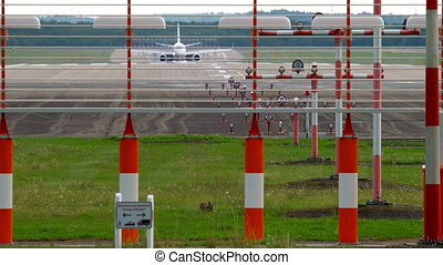 European hare near runway. - Airplane braking after landing...
