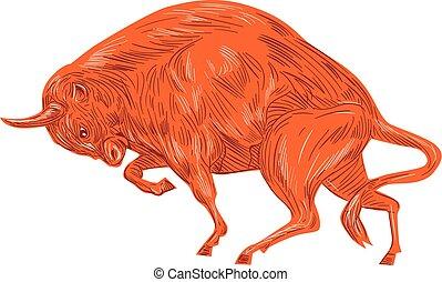 europeo, bisonte, disegno, addebitare