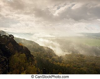 Evening after rain in autumna Saxony Switzerland. Colorful tree peaks increased from foggy landscape