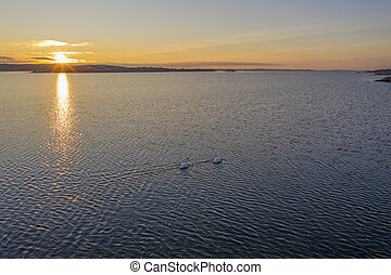 Evening at the sea drone photo