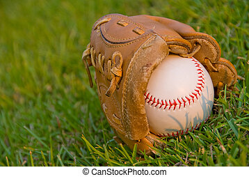 Evening Baseball